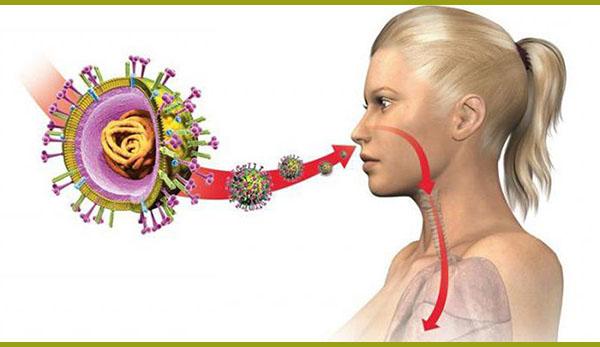 аллергозы
