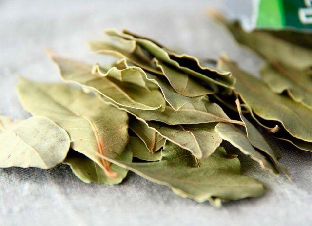 Лавровый лист лечебные свойства и противопоказания при аллергии