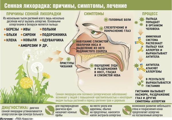 Механизм влияние пыльцы на человека