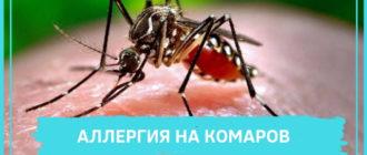 комар на коже