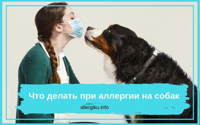 Женщина в маске с собакой