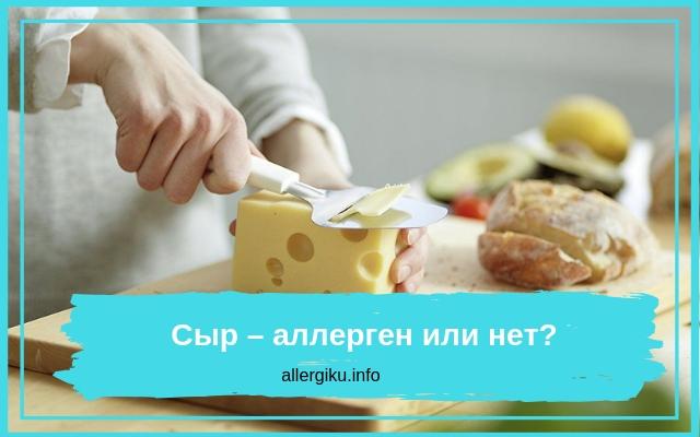 Аллергия на сыр с белой плесенью — Аллергия и все о ней