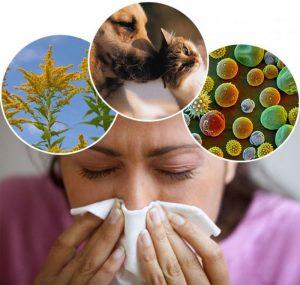 аллергены у взрослого