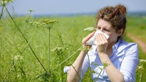 зуд слизистой оболочки носа